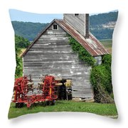 Ilini Barn Throw Pillow