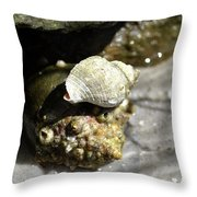 I'll Carry You Throw Pillow
