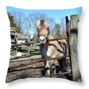 I'll Miss You Throw Pillow