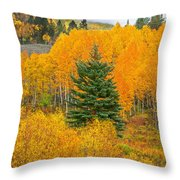 I'll Never Forget That Day. Throw Pillow