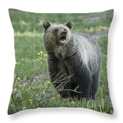 I'll Only Say This Once Throw Pillow