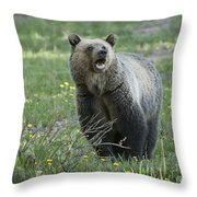 I'll Only Say This Once Throw Pillow by Sandra Bronstein