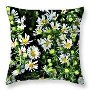 Illinois Wildflowers 1 Throw Pillow