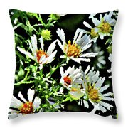 Illinois Wildflowers 3 Throw Pillow