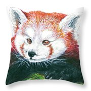 Illlustration Of Red Panda On Branch Drawn With Faber Castell Pi Throw Pillow