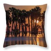 Illuminated Palm Trees Throw Pillow