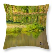 Illusion Confusion Throw Pillow