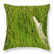 Illusions In The Grass Throw Pillow