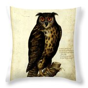 Illustration For A Book By Ulisse Aldrovandi Throw Pillow