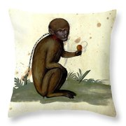 Illustration For A Book By Italian Scientist And Naturalist Ulisse Throw Pillow