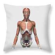 Illustration Of Upper Human Torso Throw Pillow