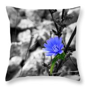 I'm Blue Throw Pillow