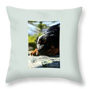 I'm Bored Rottie Throw Pillow