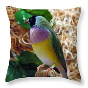 I'm Colorful Throw Pillow