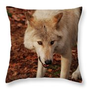 I'm Coming For You Throw Pillow