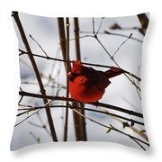 I'm Feeling Rather Red Today Throw Pillow