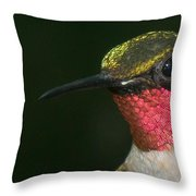 I'm Full Of Color Throw Pillow