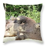 Give Me A Minute, I Know I Can Rollover Throw Pillow