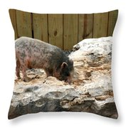 Im Not Your Ordinary Piglet Throw Pillow