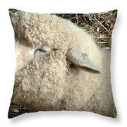 I'm Smilin' Cuz I'm Cute Throw Pillow