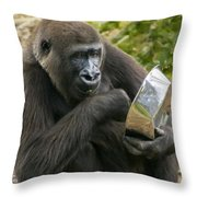 I'm So Pretty Throw Pillow