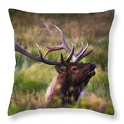 I'm Talking To You.  Throw Pillow