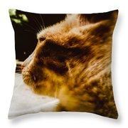 I'm The Lion  Throw Pillow