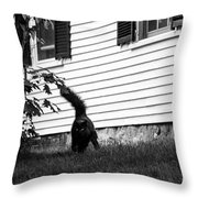 I'm Watching You Black And White Throw Pillow