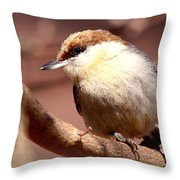 Img_0001 Brown-headed Nuthatch Throw Pillow