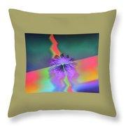 Img0028 Throw Pillow