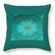 Img0138 Throw Pillow