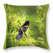 Img_0841-003 - Red-winged Blackbird Throw Pillow