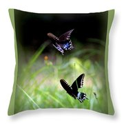 Img_1521 - Butterfly Throw Pillow