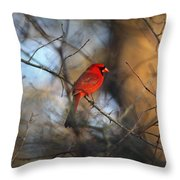 Img_2866-001 -  Northern Cardinal Throw Pillow
