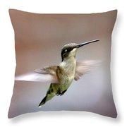 Img_3085 - Ruby-throated Hummingbird Throw Pillow