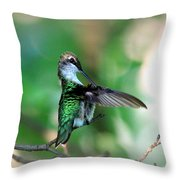 Img_4595-004 - Ruby-throated Hummingbird Throw Pillow