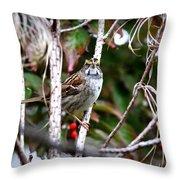 Img_6624-002 - White-throated Sparrow Throw Pillow