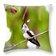 Img_7436-020 - Ruby-throated Hummingbird Throw Pillow