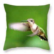Img_7512 - Ruby-throated Hummingbird Throw Pillow