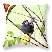 Img_7541-002 - White-throated Sparrow Throw Pillow