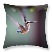 Img_8532 - Ruby-throated Hummingbird Throw Pillow