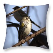 Img_9896 - Yellow-rumped Warbler Throw Pillow