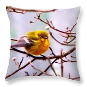 Img_9900 - Pine Warbler Throw Pillow