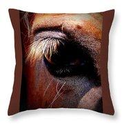 Img_9984 - Horse Throw Pillow