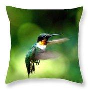 Img_9985-001 - Ruby-throated Hummingbird Throw Pillow