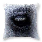 Img_9999 - Horse Throw Pillow