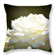 Immaculate Rose Throw Pillow