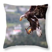 Immature Bald Eagle Landing Throw Pillow