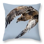 Immature Bald Eagle Leaving A Perch Throw Pillow