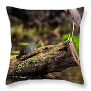 Immature Tri-colored Heron And Peninsula Cooter Turtle Throw Pillow